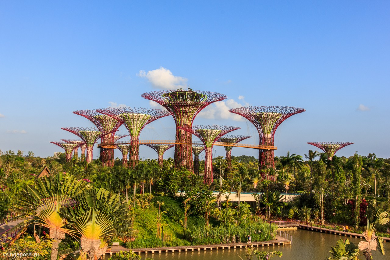 Фото Gardens by the Bay в Сингапуре